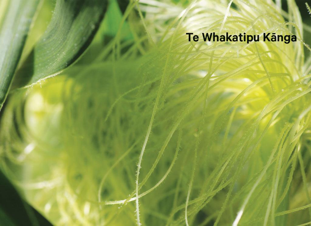 Te Whakatipu Kānga