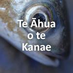 Te Āhua o te Kanae